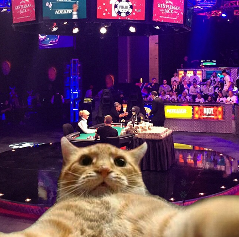 WSOP 2015: The COLOSSal cheating